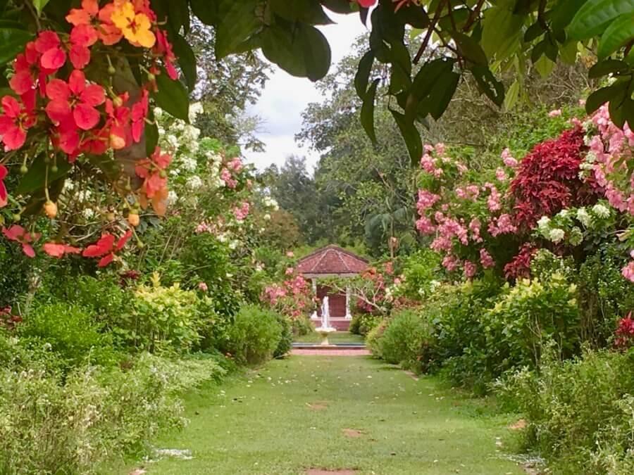Penang gardens